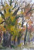 Herbst in Vimperk, Böhmen