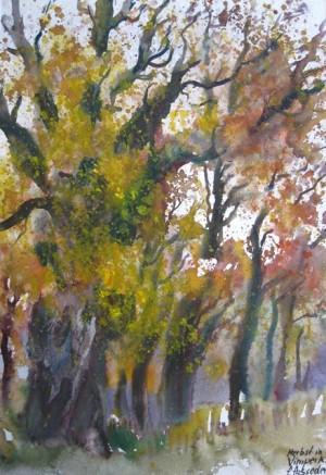 Autumn in Vimperk, Bohemia