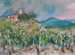 Vineyard in Radda, Italy
